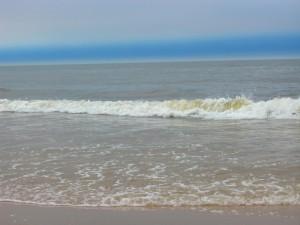 Morze w Haarlem